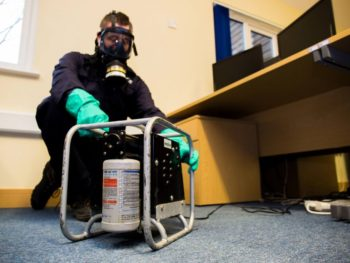 How To Hire A Best Pest Controller Professional